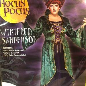 Hocus Pocus 2X Halloween Costume Dress